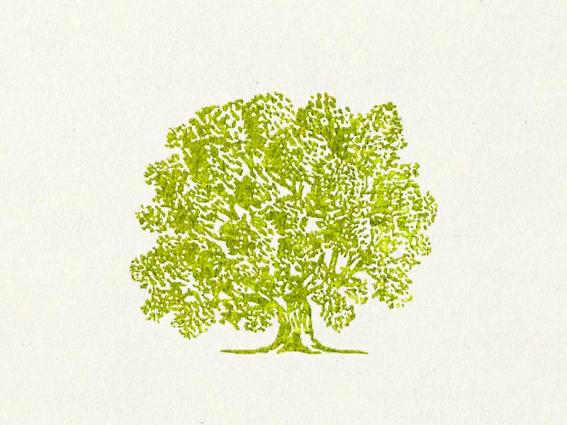 It's Springtime ... digital painting springtime illustration tree vector graphic