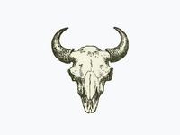 Bull Skull ...