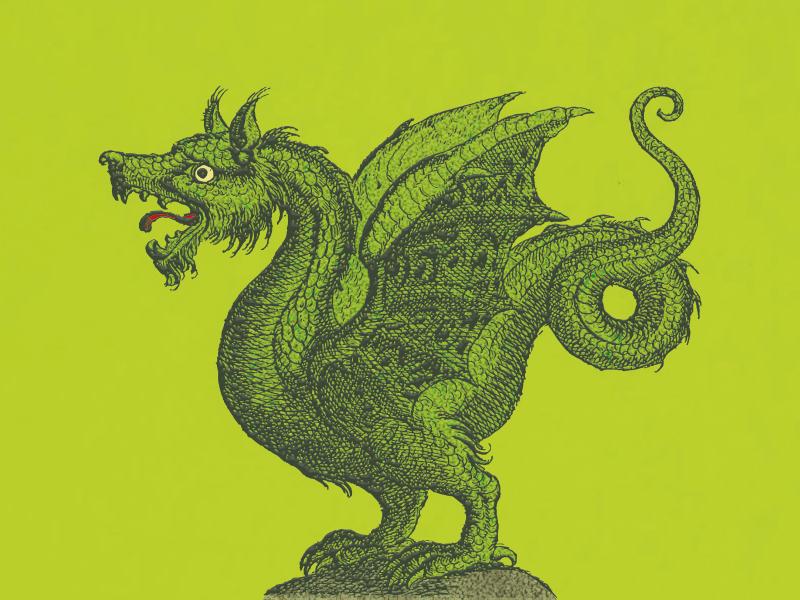 Lindwurm ... colorful illustration vector graphic dragon vector illustration