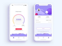 A app on personal borrowing