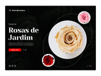Rosas & Garden typography photoshop desenhar layout rose landing page design dailyui dribbble