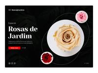 Rosas & Garden typography photoshop desenhar layout rose landing page design dailyui dribbble
