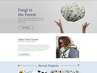 Amber Paris Site Design