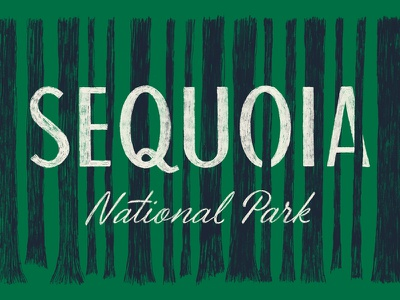 Sequoia National Park type california sign painter brush script illustration trees redwoods national park sequoia