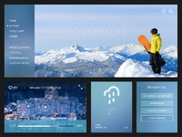 08012015 03 st snow ui dribbble big black