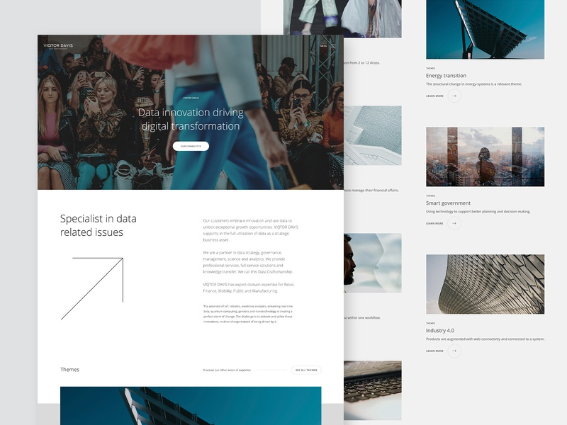 Viqtor Davis ux branding minimal web webdesign data ui website design interface