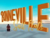 Boneville Salt Flats