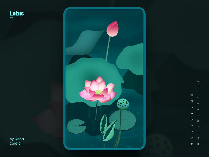 Lotus art 插画 illustration photoshop