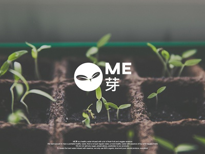 ME芽 - Brand Identity