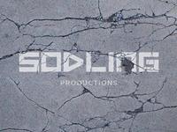 Sodling2