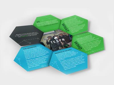 Conceptual Tespa Brochure Design
