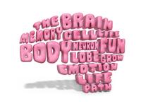 The Brain 🧠💭