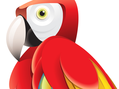 Parrot tutorial parrot bird tropical macaw feathers colourful stare envato vectortuts peak red vector tutorial how to gradients illustrator adobe