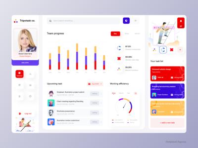 Tripotask co. task manager user dashboard design