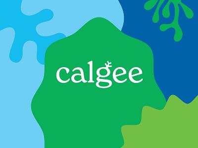 Calgee Wordmark marine type vitamins healthy supplements packaging seaweed algae abstract illustration food and drink gluten free branding sustainable omega 3 omega supplement vegan calgee
