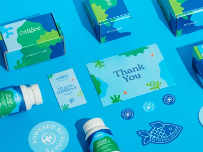 Calgee Packaging Design omega 3 wellness health water marine life stickers recyclable eco-friendly sustainable vegan label design supplements vitamins seaweed algae brand identity bottle box packaging design