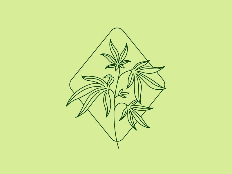 CBD Oil Logo cosmetics cbd oil lozenges supplements marijuana cannabis leaves mark holistic health natural organic logo brand identity