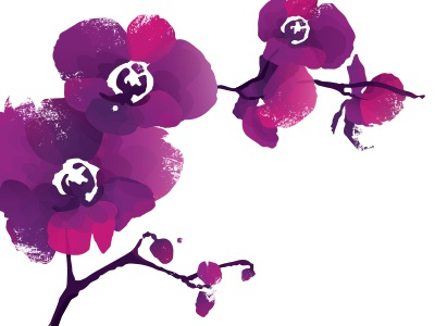 Orchids orchids wedding invitation