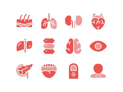 Human Organs Icon Set brain heart kidney lung anatomy body organ human icon set icons icon