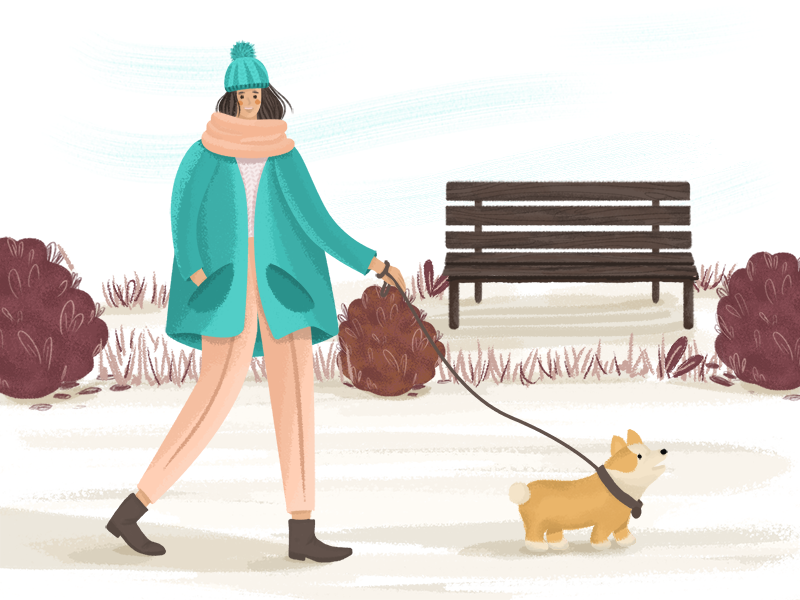 Corgi in the park big coat cold plants bench autumn character girl corgi dog park walk illustration