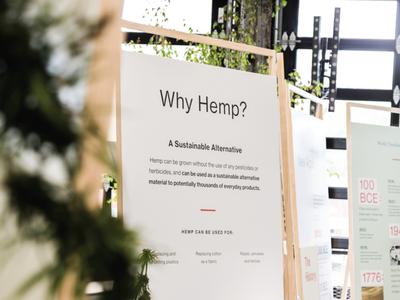 Hemp Grounds: The Wonder Plant