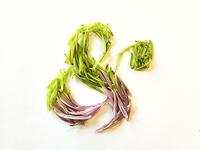 Green & Purple Ampersand