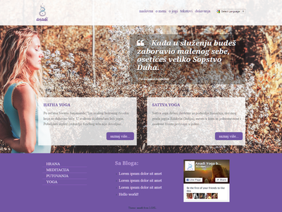 anadi - wordpress theme v2