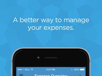 01 expenses