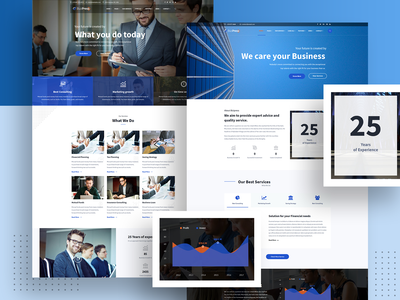 Bizipress Finance Consultant Theme