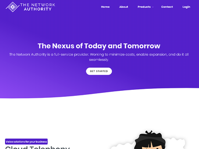 The Network Authority - Homepage Web Design