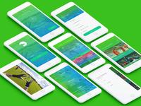 Provision - UI/UX App