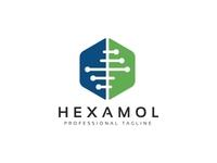 Hexagon Molecular Logo