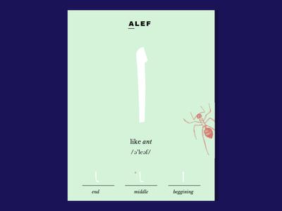 Arabic Letter Cards - Letter Alef language calligraphy illustration learning card letter arabic