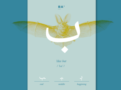 Ba' letter learning language card calligraphy arabic illustration