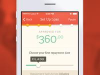 Set Up Loan