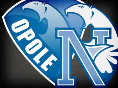 Netpioneer netpioneer logo design sports logo branding