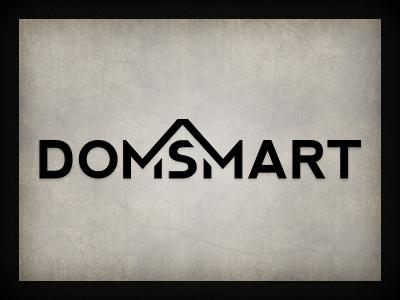 Domsmart logo branding qchar design logo design