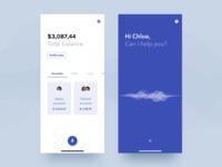VoiceBanking App - Concept