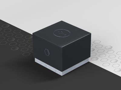 Vanadium Watch Packaging punctual design time vanadium entrepreneurs watch box box luxury brand branding design