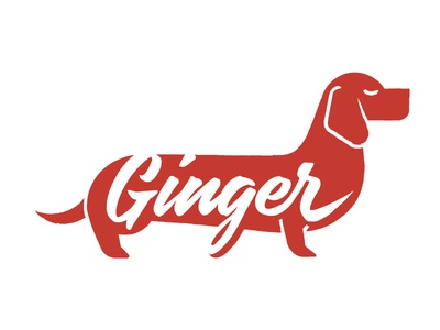 Ginger Logo logo dachshund illustration