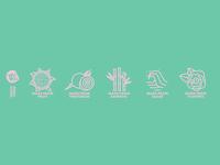 Rawnice Icons branding brand design illustration graphic design design art design icon set iconography icon design icon icons