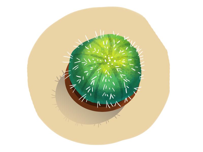 Cactus dribble2