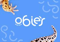 Obie's Worms Logo Design