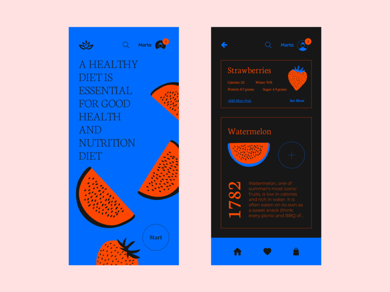 Watermelon App web mobile app design mobile design mobile app mobile ui web  design typography colour palette illustration website mobile ui ux