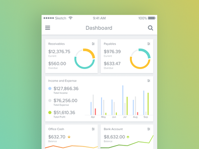 Accounting Dashboard overview account infographic mobile app chart accounting cross platform android ios dashboard