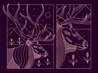 Idaho Rangeland - Elk 🦌
