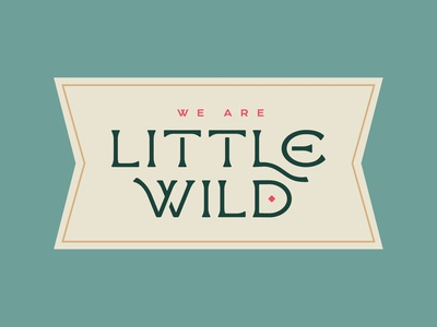 Little Wild Logotype custom typeface graphic  design folkart typography identity design brooklyn nevada reno logotype folk branding lettering