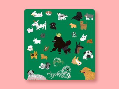 Best in Show drawing design animals dog illustration newyork illustration dogs