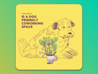 A dog friendly space