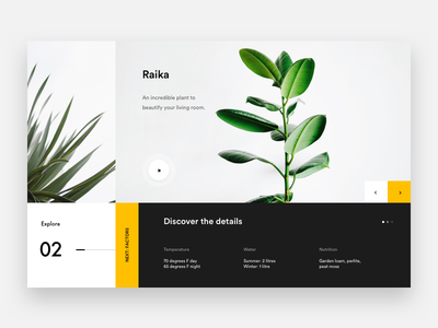 Raika Plant landing explore yellow webdesign product minimal plant web white